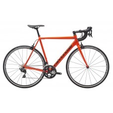Cannondale CAAD 12 (105) Road Bike 2019 Acid Red