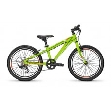 Focus 20 Raven Rookie 1.0 Kids Mountain Bike 2016 Green Glossy